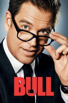 Булл (Мистер Булл) / Bull